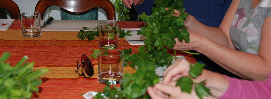 Lebanese and Moroccan Cooking Classes